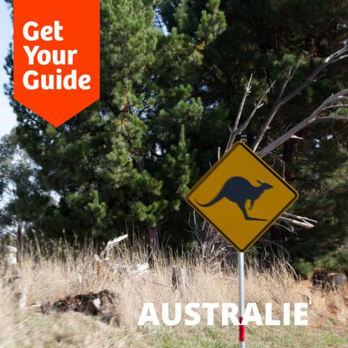 panneau attention kangourou sur le bord d'une route en australie