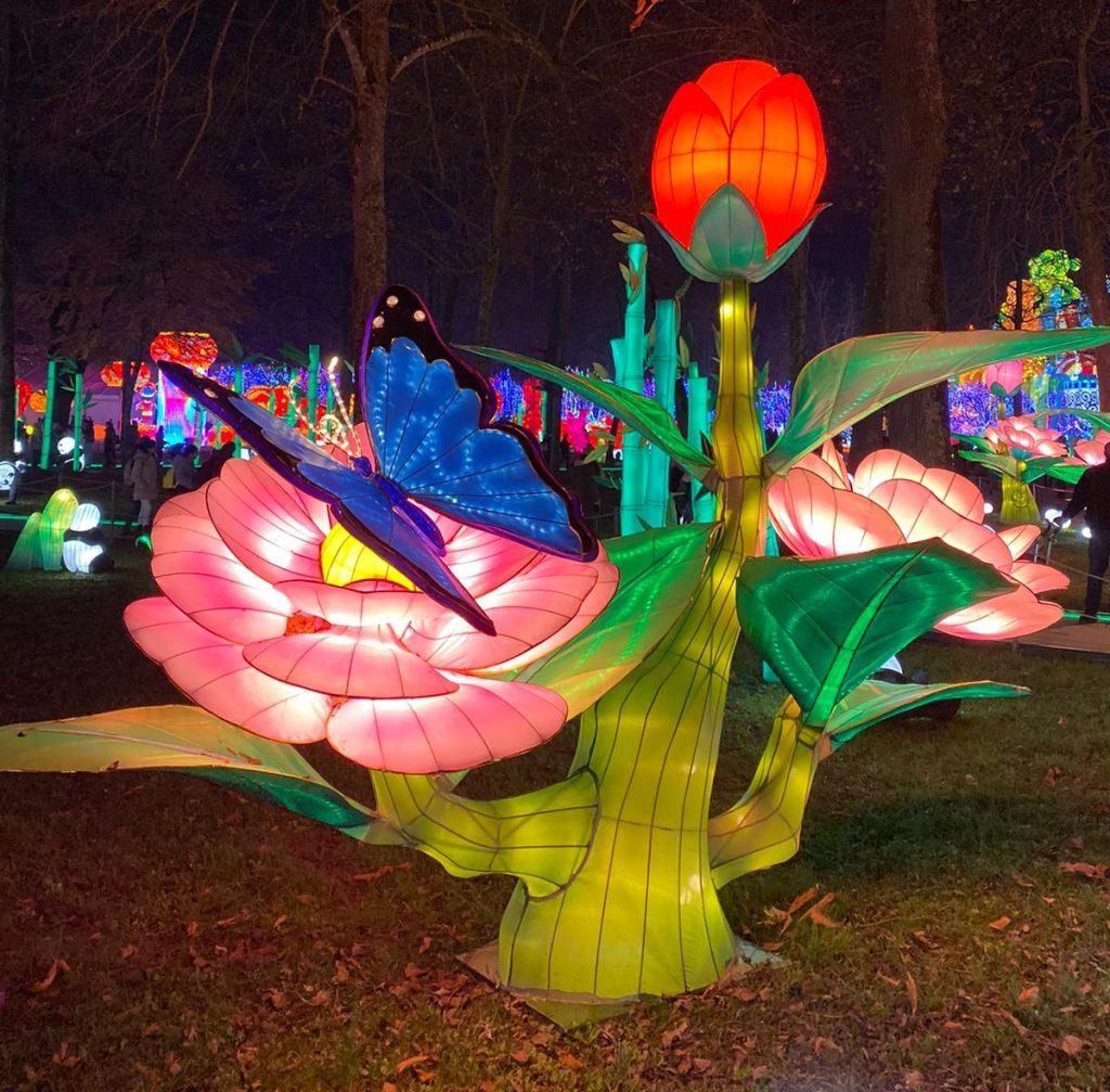 fleur géante et papillon au Festival des lanternes de Gaillac