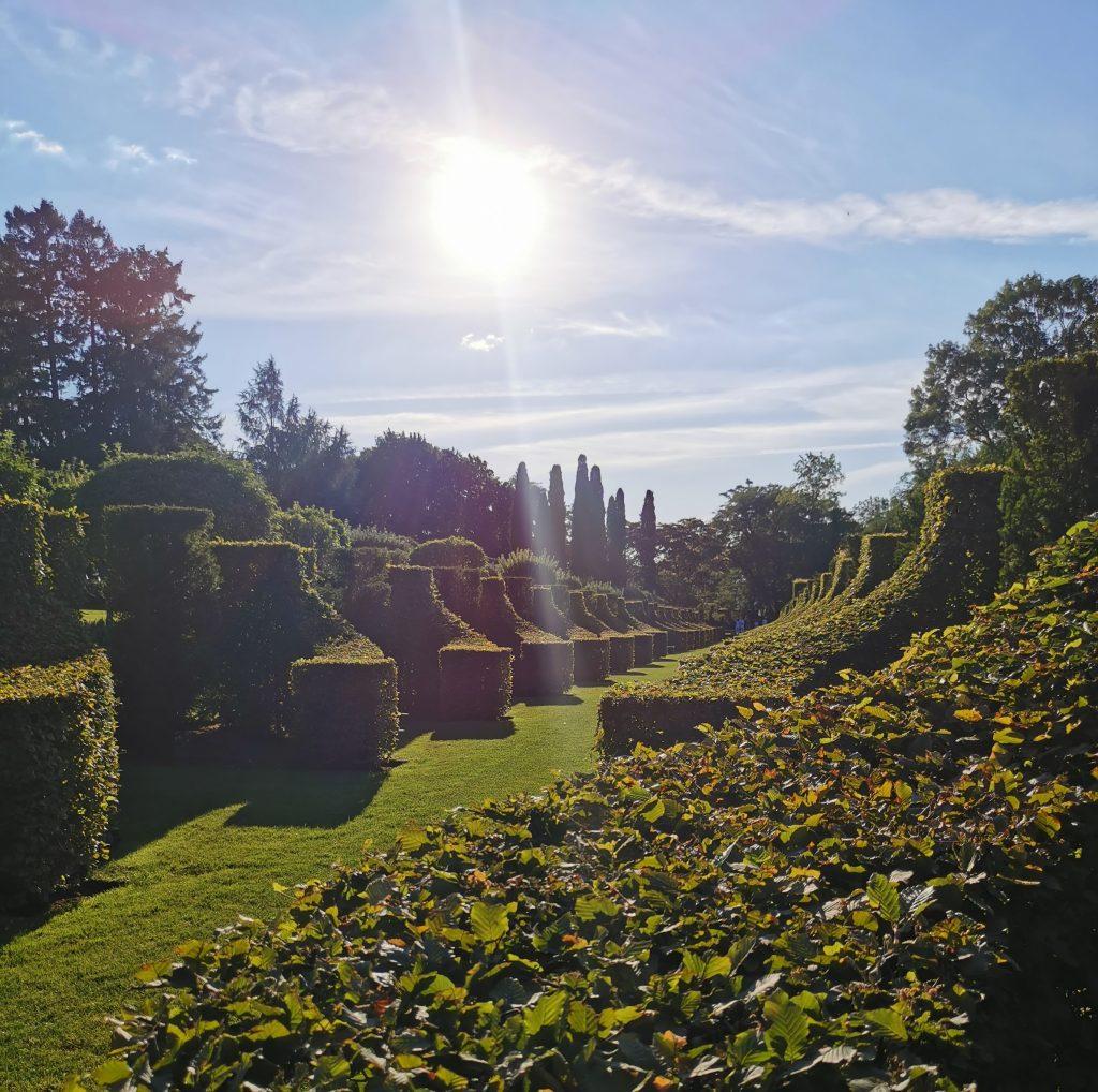 coucher de soleil dans les jardins d'eyrignac